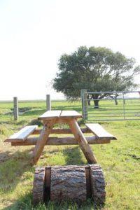 Picknickbank bij een Rustpunt