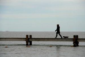 IJsselmeer Vooroever Koopmanspolder Andijk wandelen